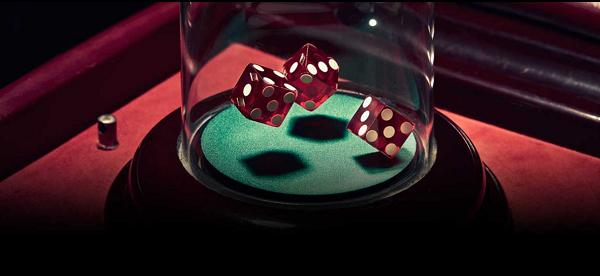 카지노게임-비보게이밍-Vivo Gaming-식보
