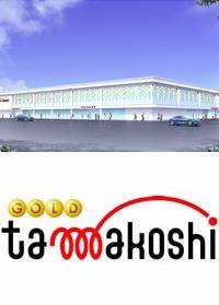 파칭코-파칭코 홀-GOLD TAMAKOSHI